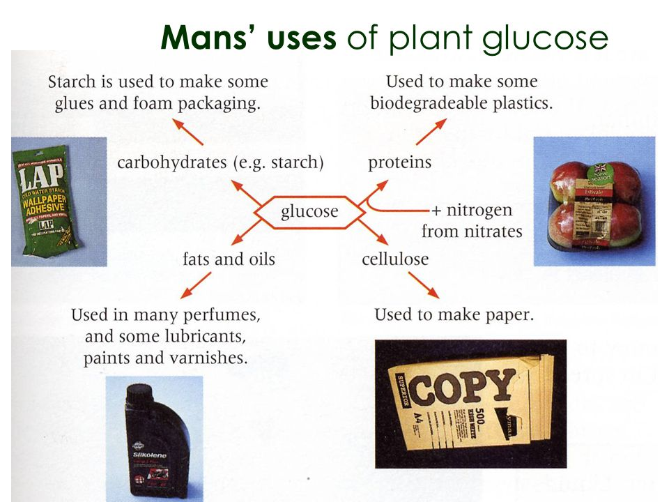 Mans' uses of plant glucose