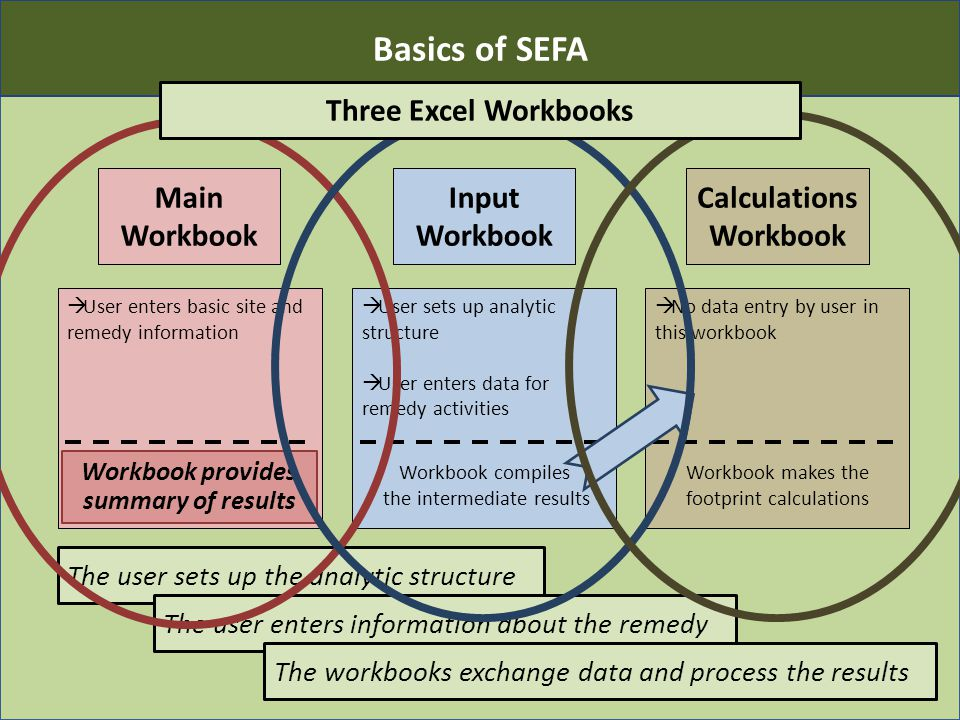 Main Workbook  User enters basic site and remedy information Input Workbook  User sets up analytic structure  User enters data for remedy activities Workbook compiles the intermediate results Calculations Workbook  No data entry by user in this workbook Workbook makes the footprint calculations 12 The user sets up the analytic structure The user enters information about the remedy The workbooks exchange data and process the results Workbook provides summary of results Basics of SEFA Three Excel Workbooks