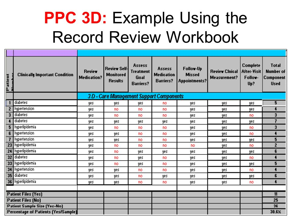 PPC 3D: Example Using the Record Review Workbook