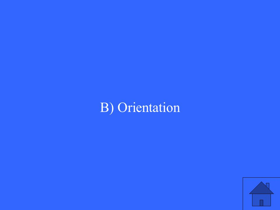 B) Orientation