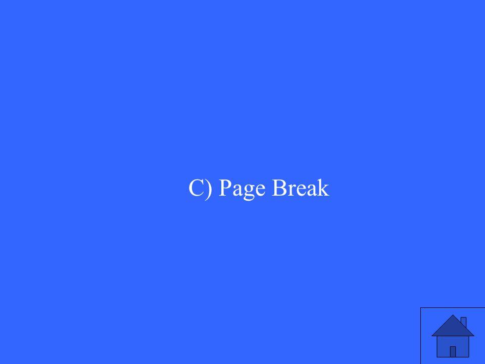 C) Page Break