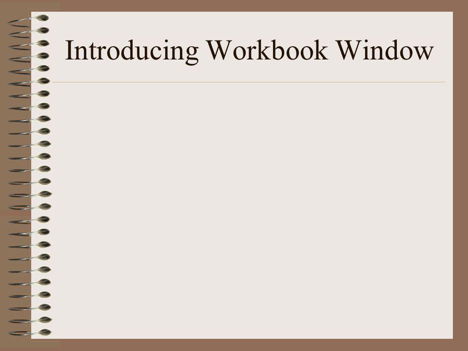 Introducing Workbook Window