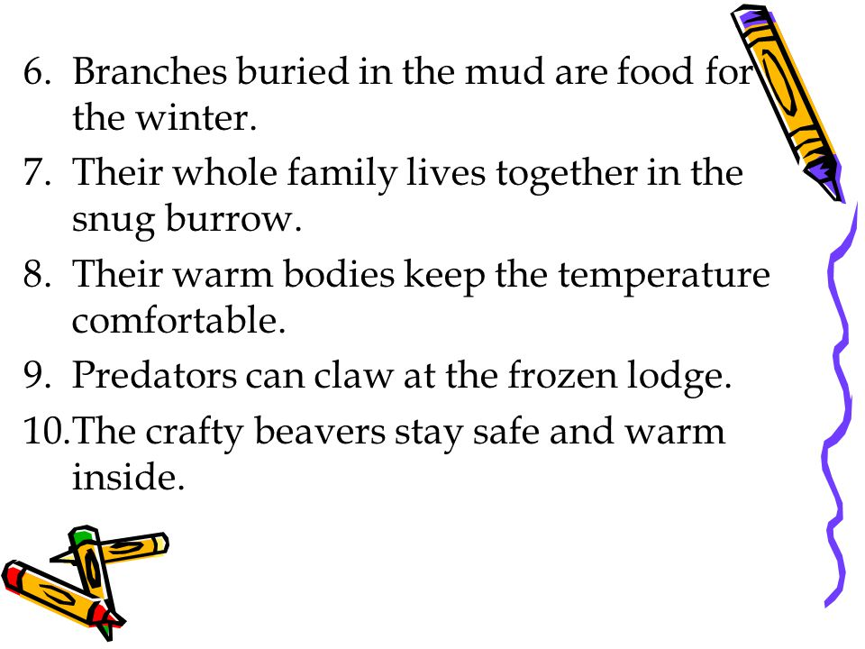 6.Branches buried in the mud are food for the winter.