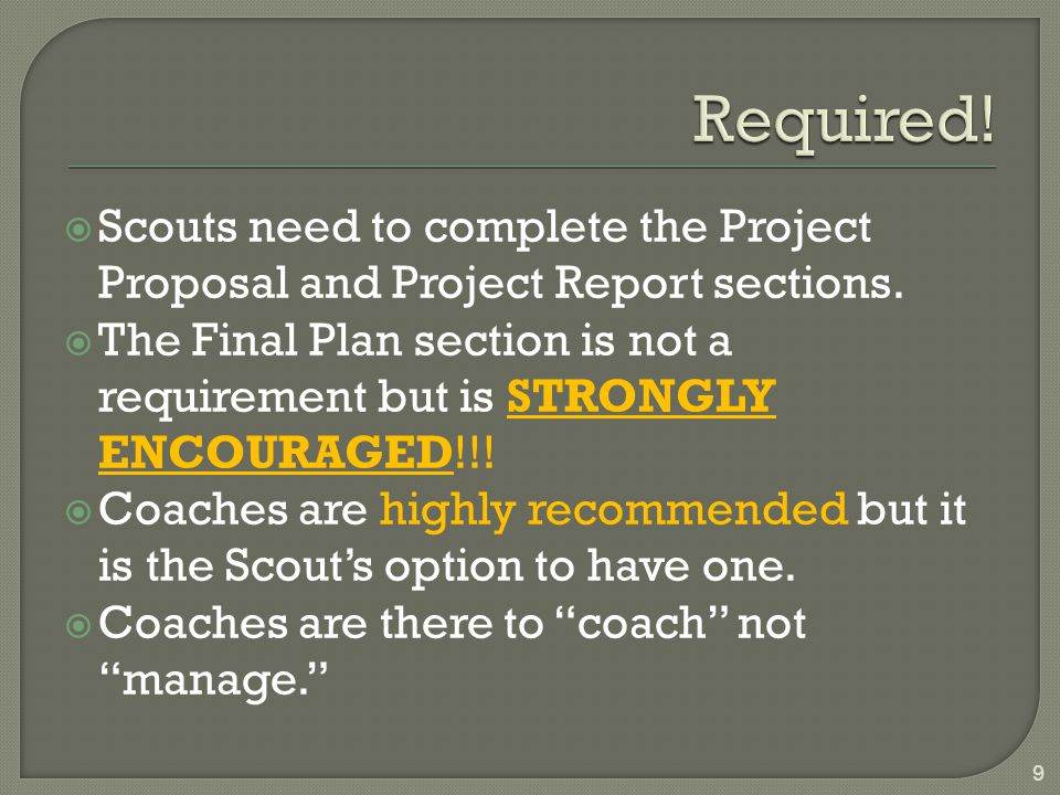  Scouts need to complete the Project Proposal and Project Report sections.