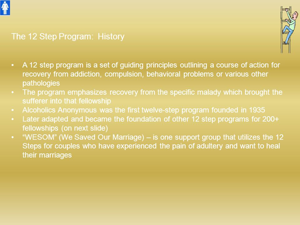 The 12 Step Program: History A 12 step program is a set of guiding principles outlining a course of action for recovery from addiction, compulsion, be