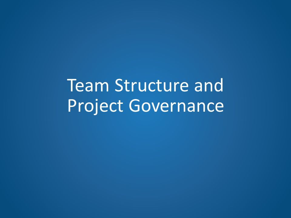 Team Structure and Project Governance