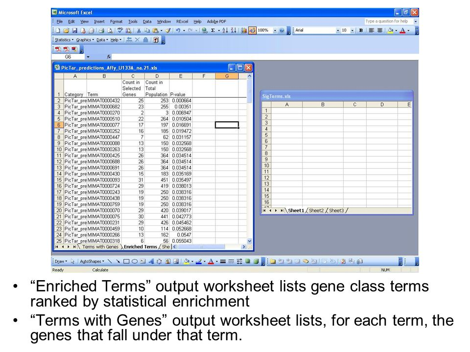 If desired, one can link additional information to the genes (or microRNAs) listed in the output worksheets.