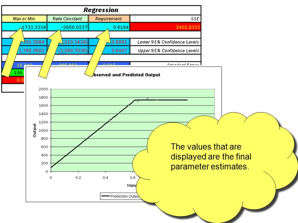 The values that are displayed are the final parameter estimates.
