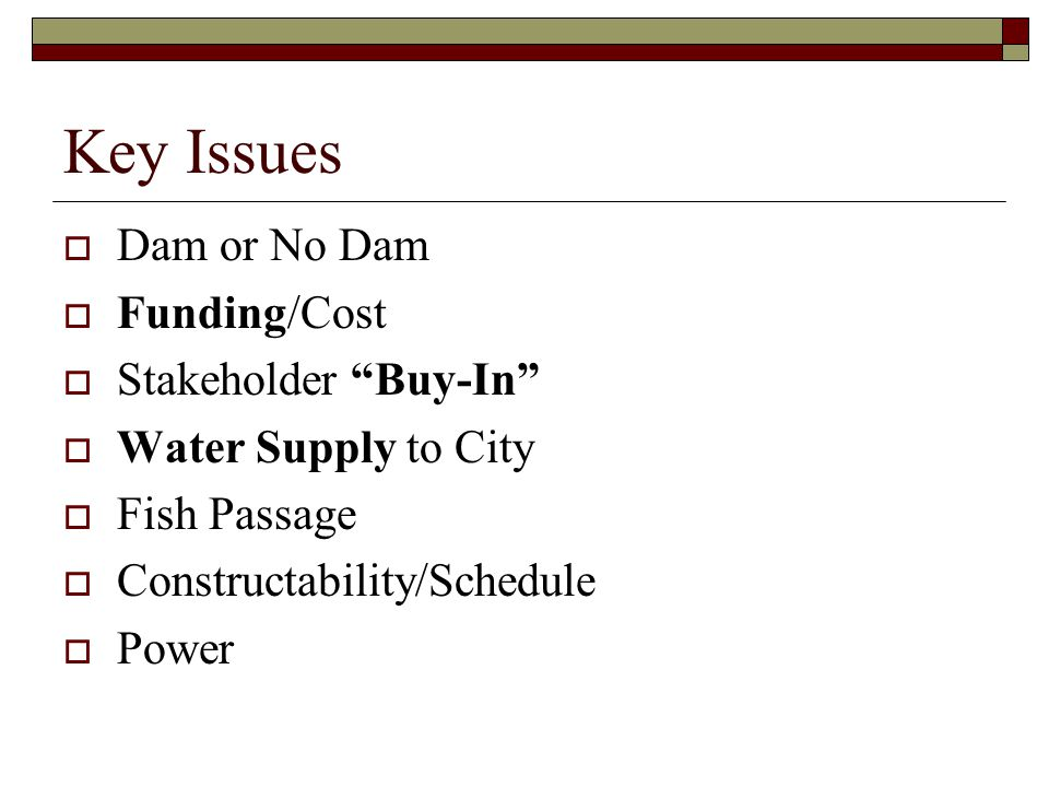 Key Issues  Dam or No Dam  Funding/Cost  Stakeholder Buy-In  Water Supply to City  Fish Passage  Constructability/Schedule  Power