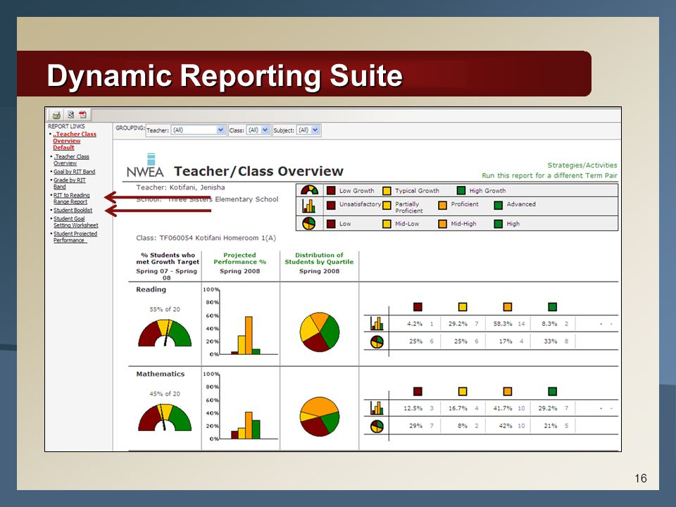 Dynamic Reporting Suite 16