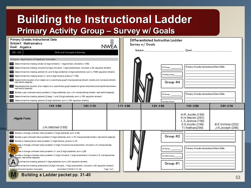 Building the Instructional Ladder Primary Activity Group – Survey w/ Goals A M R Building a Ladder packet pp.