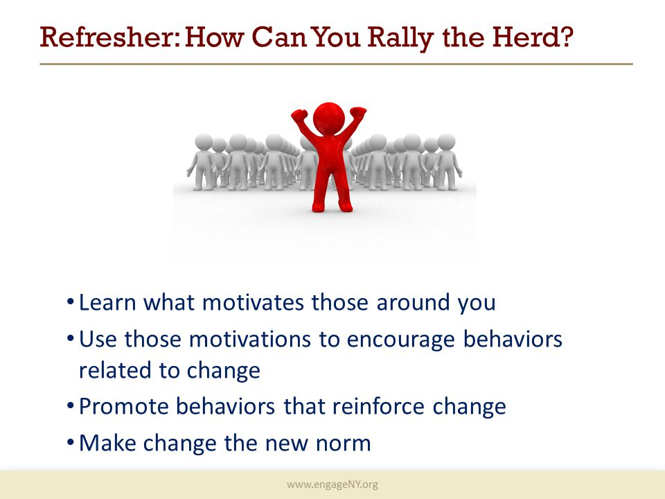 www.engageNY.org Refresher: How Can You Rally the Herd.