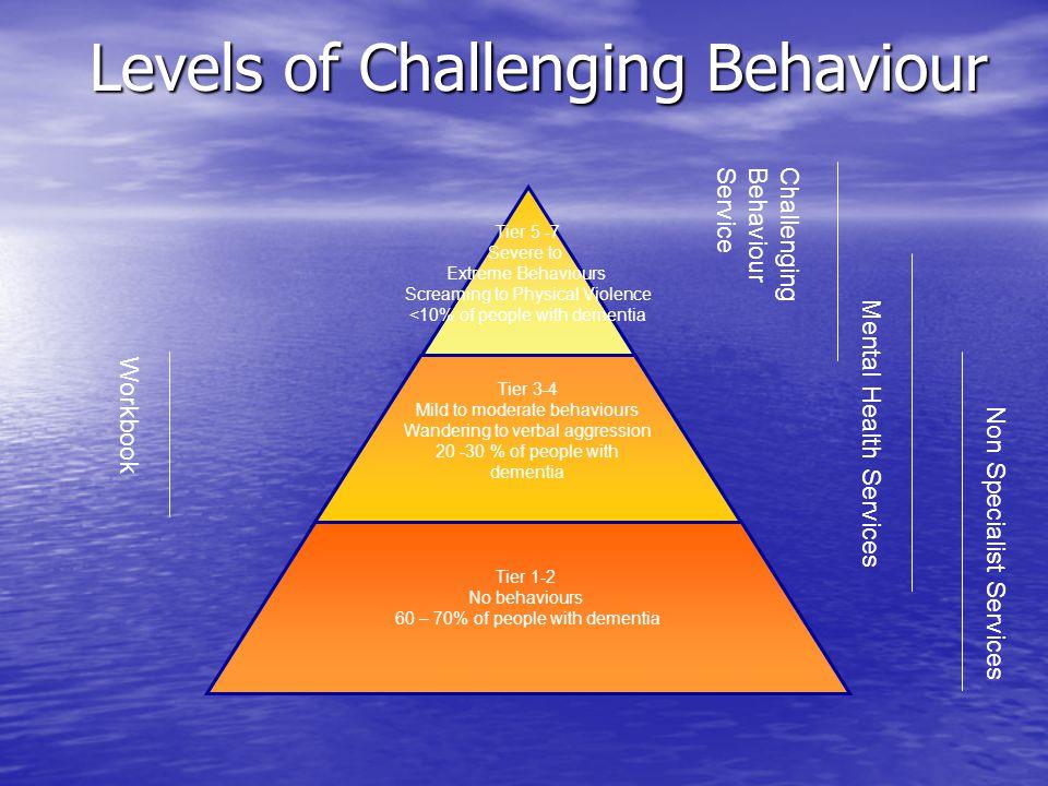 Levels of Challenging Behaviour ChallengingBehaviourService Workbook Mental Health Services Non Specialist Services