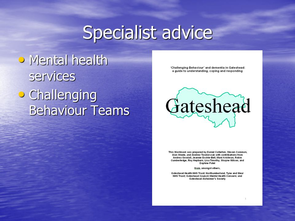 Specialist advice Mental health services Mental health services Challenging Behaviour Teams Challenging Behaviour Teams