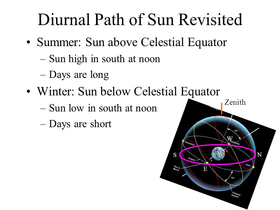 Diurnal Path of Sun Revisited Summer: Sun above Celestial Equator –Sun high in south at noon –Days are long Winter: Sun below Celestial Equator –Sun l
