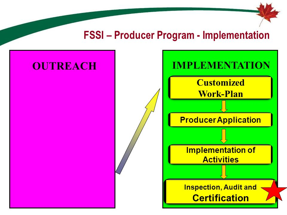 FSSI – Producer Program - Implementation Customized Work-Plan Producer Application Inspection, Audit and Certification IMPLEMENTATION Implementation o