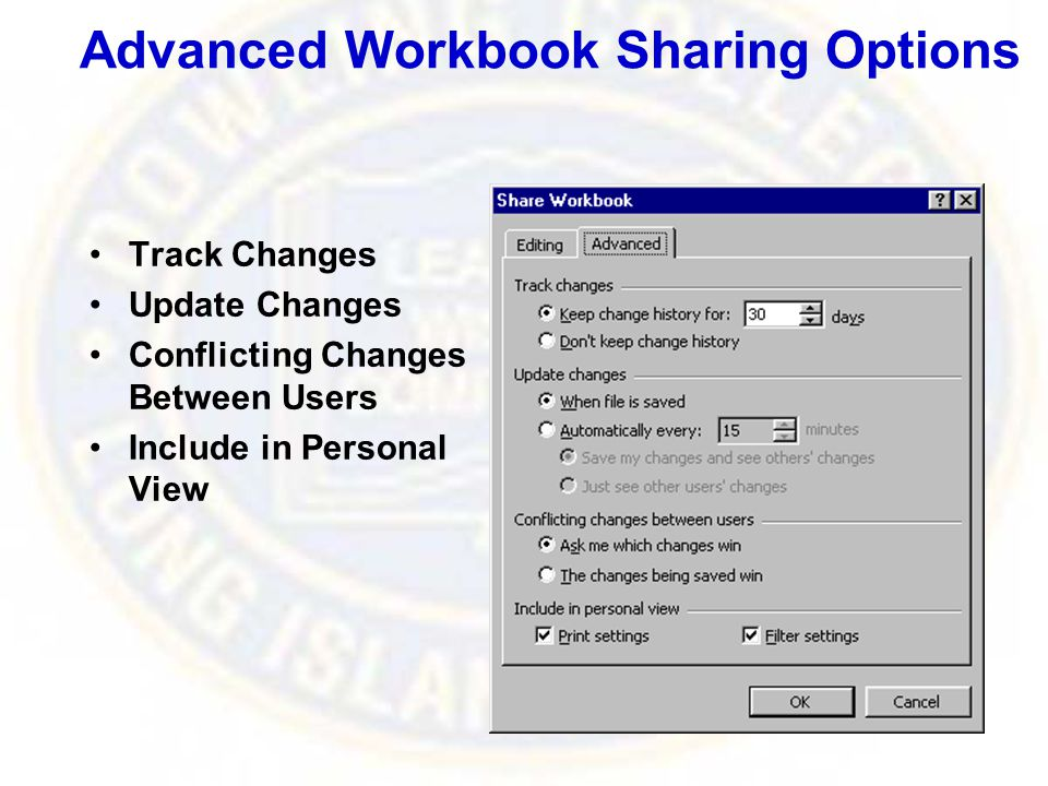 Advanced Workbook Sharing Options Track Changes Update Changes Conflicting Changes Between Users Include in Personal View