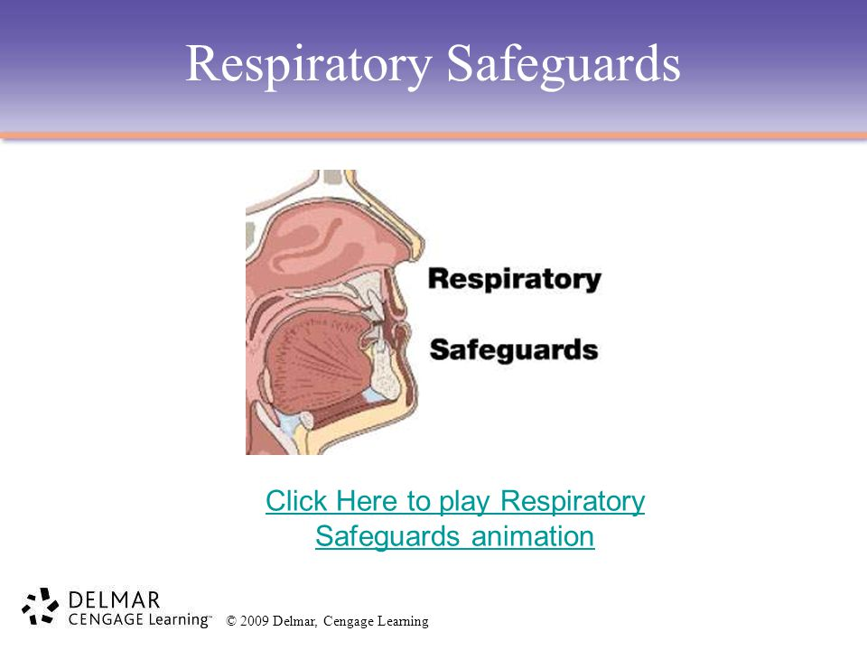 Respiratory Safeguards Click Here to play Respiratory Safeguards animation