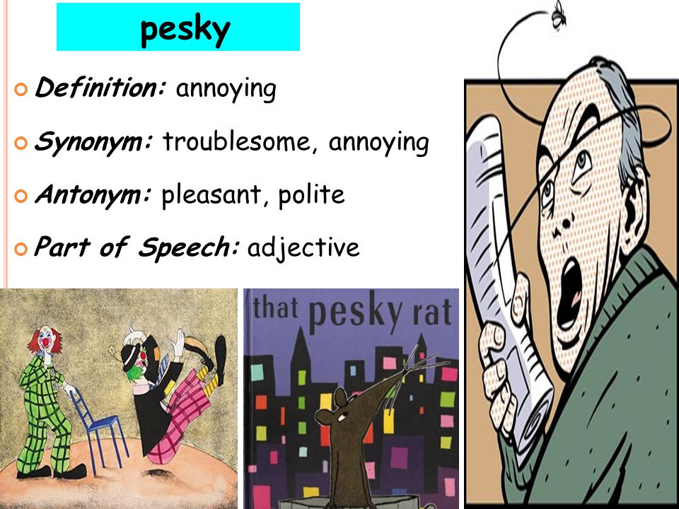 """pesky """"use context clues"""" """"What if she thinks we are loud and pesky?"""" asked Caleb. The golfer was angered by the pesky rabbit on the golf course. pesk"""