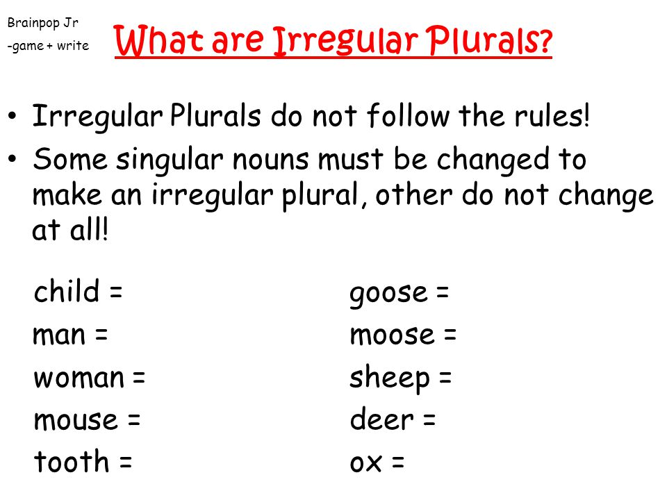 What are Plural Nouns? Some plurals end with –s Examples) plant / plants book / books Some plurals end with –es Examples) bench / benches fox / foxes