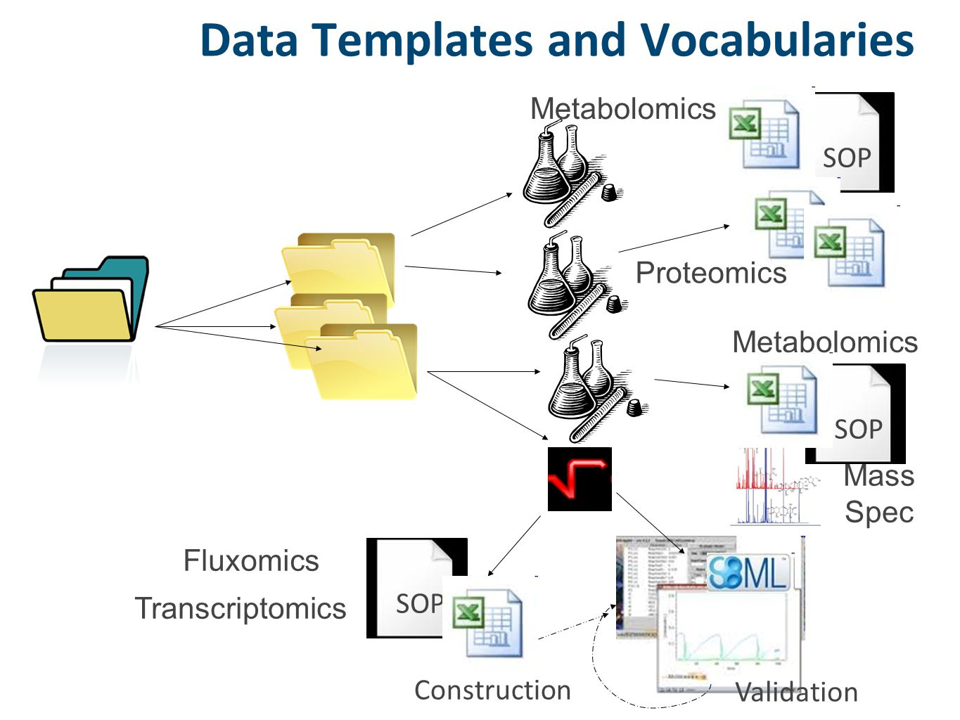 SOP Data Templates and Vocabularies Construction Validation SOP Metabolomics Mass Spec Transcriptomics Proteomics Fluxomics