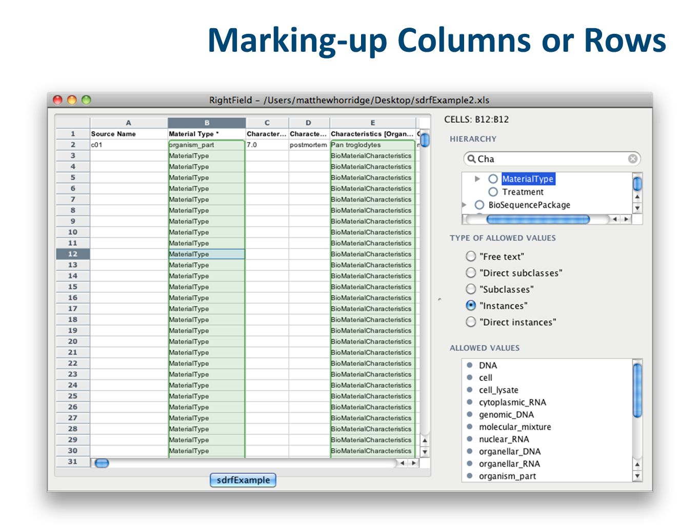 Marking-up Columns or Rows