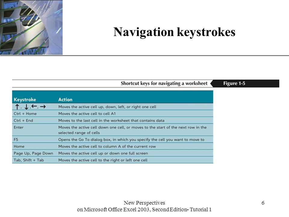 XP New Perspectives on Microsoft Office Excel 2003, Second Edition- Tutorial 1 6 Navigation keystrokes