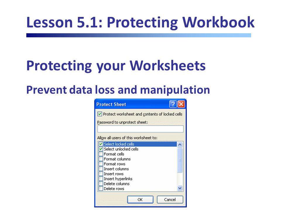 Lesson 5.1: Protecting Workbook Protecting your Worksheets Prevent data loss and manipulation