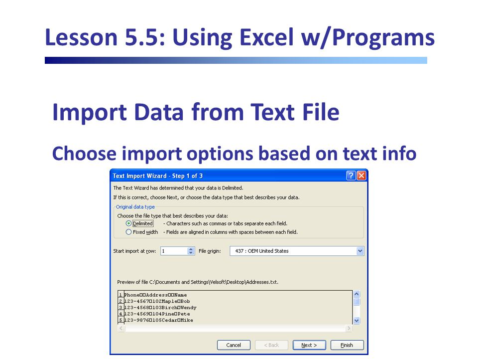 Lesson 5.5: Using Excel w/Programs Import Data from Text File Choose import options based on text info