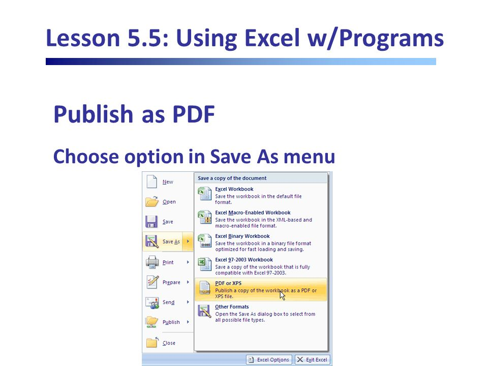 Lesson 5.5: Using Excel w/Programs Publish as PDF Choose option in Save As menu