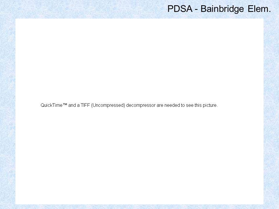 PDSA - Bainbridge Elem.