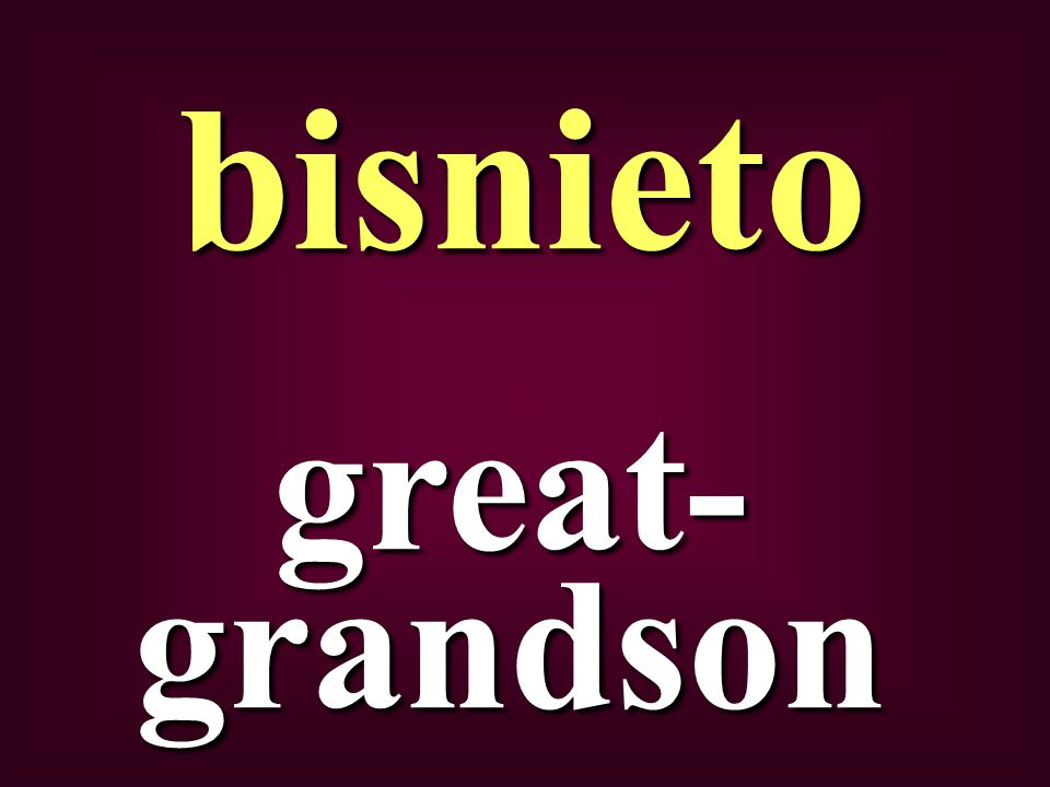 great- grandson bisnieto