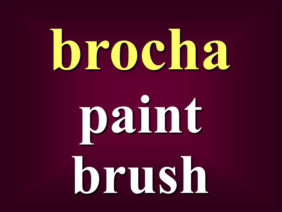 paint brush brocha