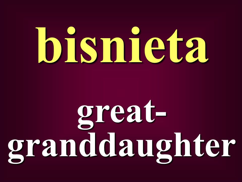 great- granddaughter bisnieta