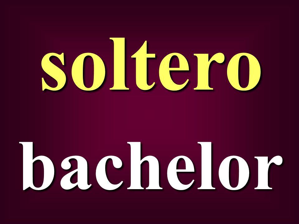 bachelor soltero