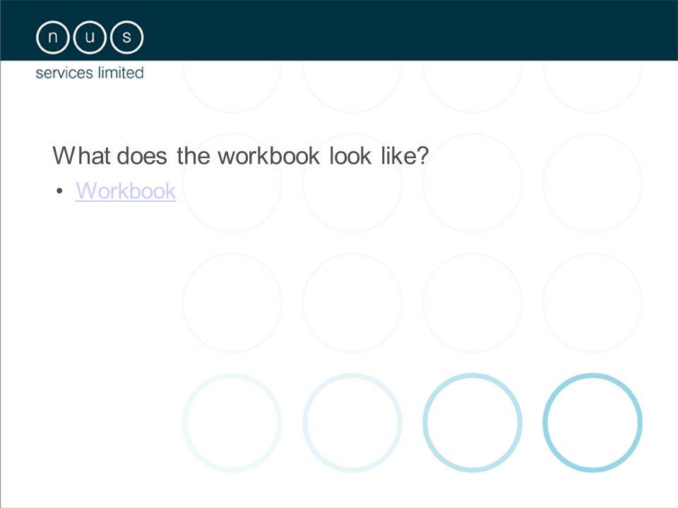 What does the workbook look like? Workbook