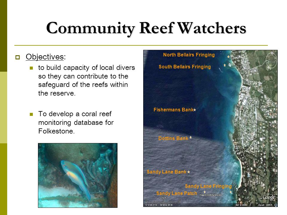 Community Reef Watchers  Objectives: to build capacity of local divers so they can contribute to the safeguard of the reefs within the reserve.