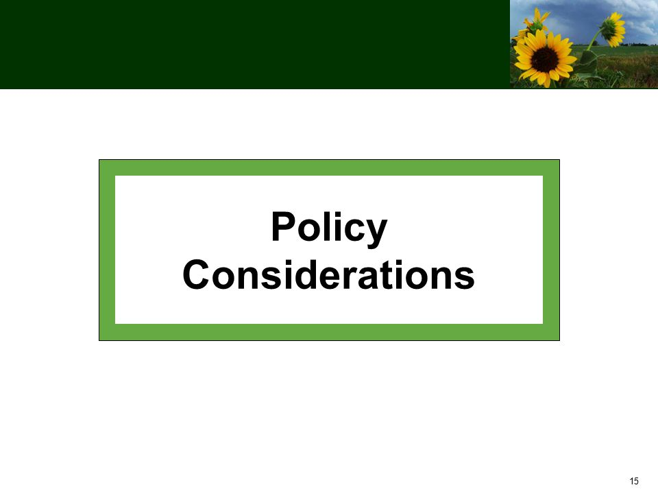 15 Policy Considerations