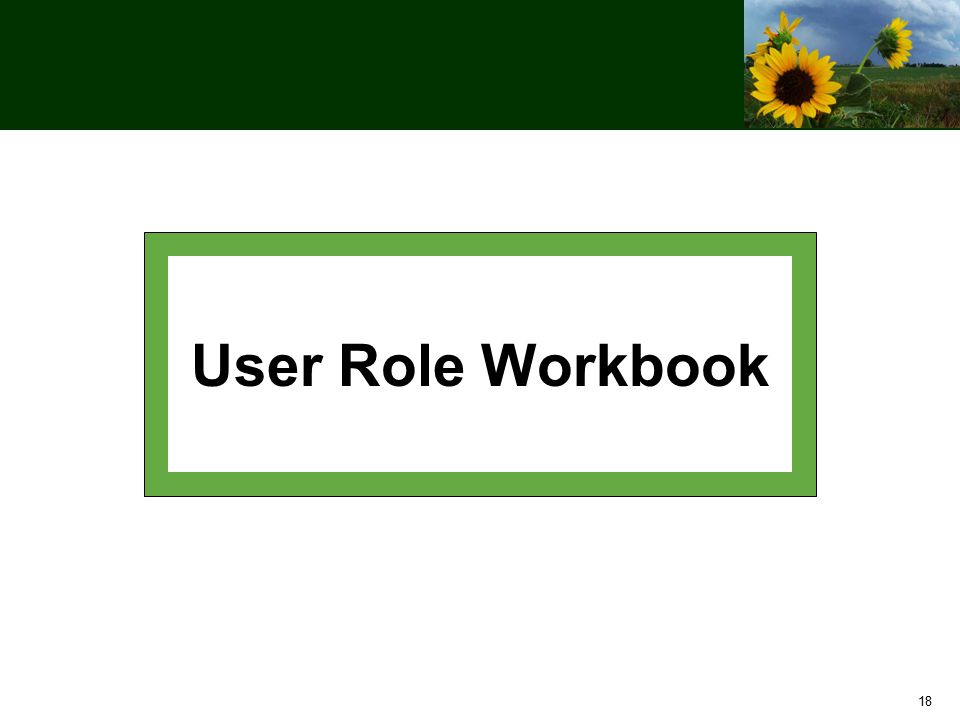 18 User Role Workbook