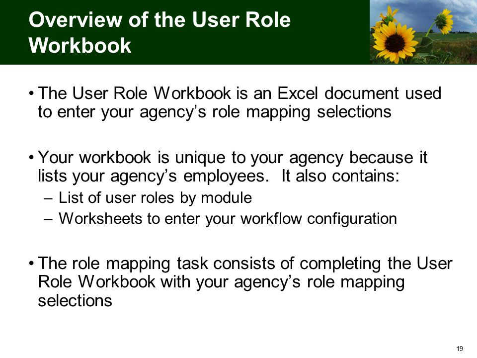19 Overview of the User Role Workbook The User Role Workbook is an Excel document used to enter your agency's role mapping selections Your workbook is unique to your agency because it lists your agency's employees.