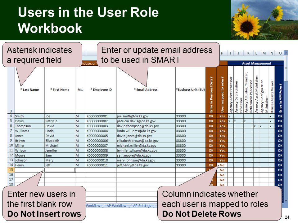 24 Users in the User Role Workbook Asterisk indicates a required field Enter new users in the first blank row Do Not Insert rows Enter or update email address to be used in SMART Column indicates whether each user is mapped to roles Do Not Delete Rows