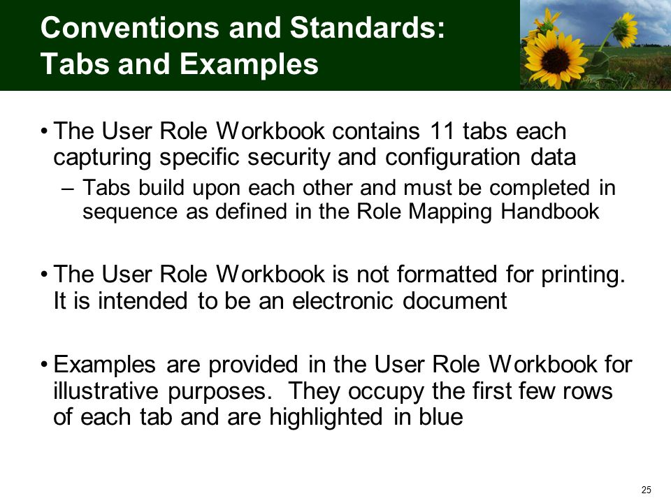 25 Conventions and Standards: Tabs and Examples The User Role Workbook contains 11 tabs each capturing specific security and configuration data –Tabs build upon each other and must be completed in sequence as defined in the Role Mapping Handbook The User Role Workbook is not formatted for printing.