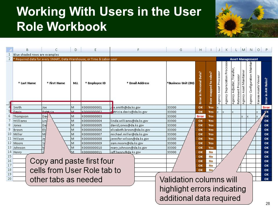 28 Working With Users in the User Role Workbook Copy and paste first four cells from User Role tab to other tabs as needed Validation columns will highlight errors indicating additional data required