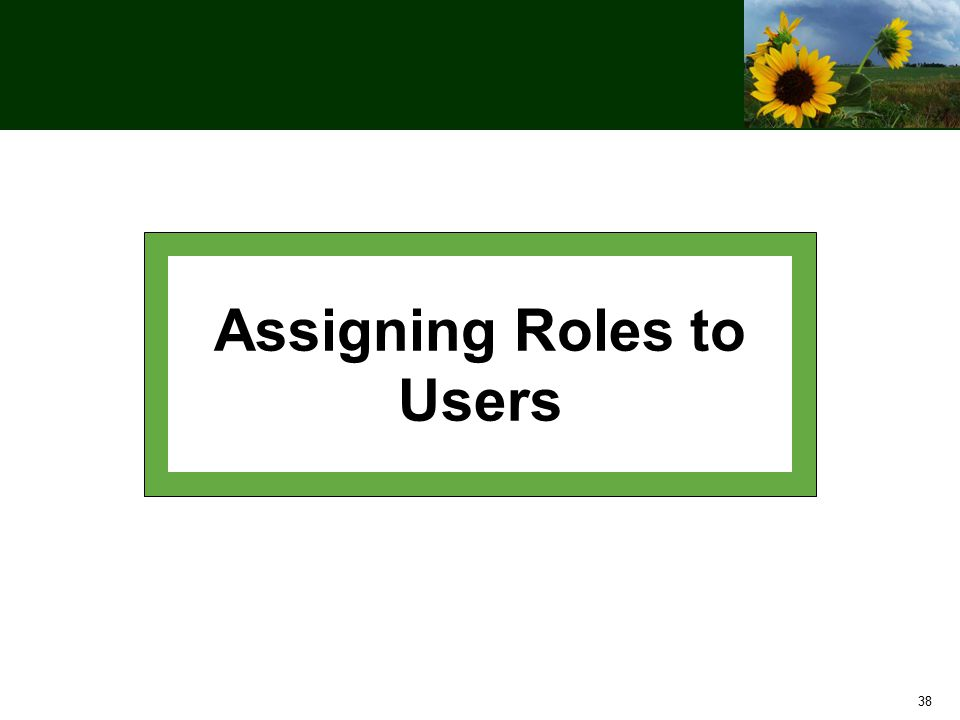 38 Assigning Roles to Users