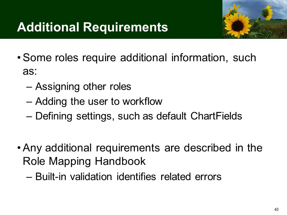 40 Additional Requirements Some roles require additional information, such as: –Assigning other roles –Adding the user to workflow –Defining settings, such as default ChartFields Any additional requirements are described in the Role Mapping Handbook –Built-in validation identifies related errors