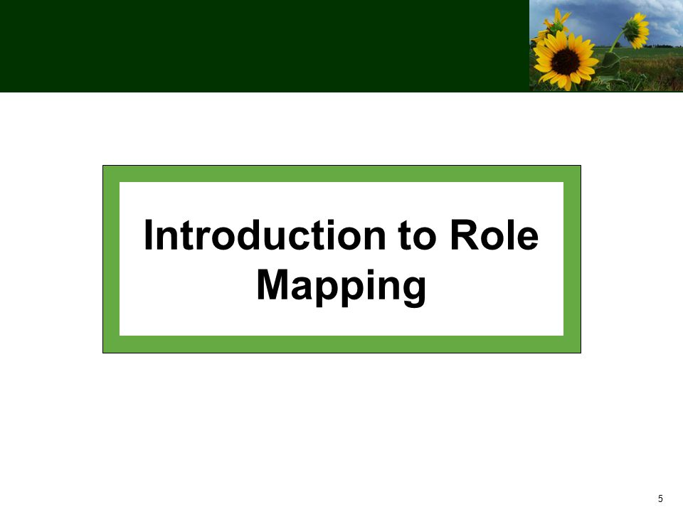 6 Role Mapping Workshop Objectives After this workshop you should: Understand the purpose of role mapping Know how to use the User Role Workbook and Role Mapping Handbook Be ready to complete your agency's role mapping task