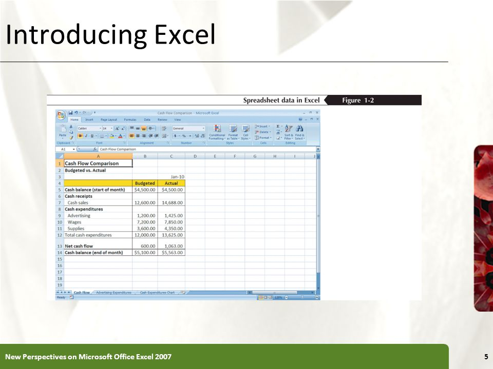 Introducing Excel New Perspectives on Microsoft Office Excel 20075
