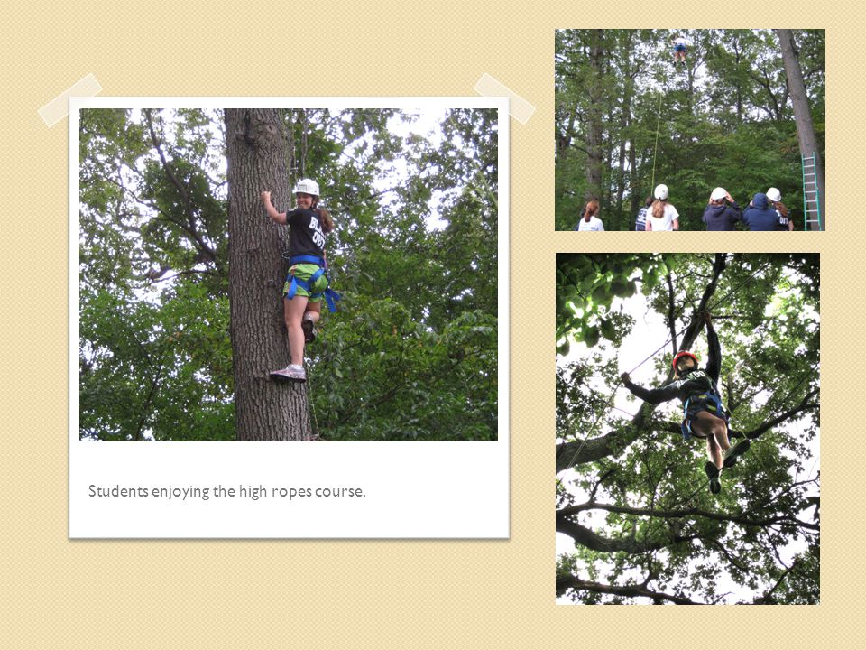 Students enjoying the high ropes course.