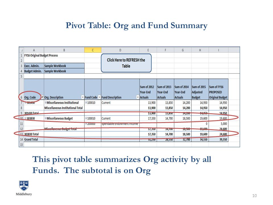 Pivot Table: Org and Fund Summary. 10 This pivot table summarizes Org activity by all Funds.