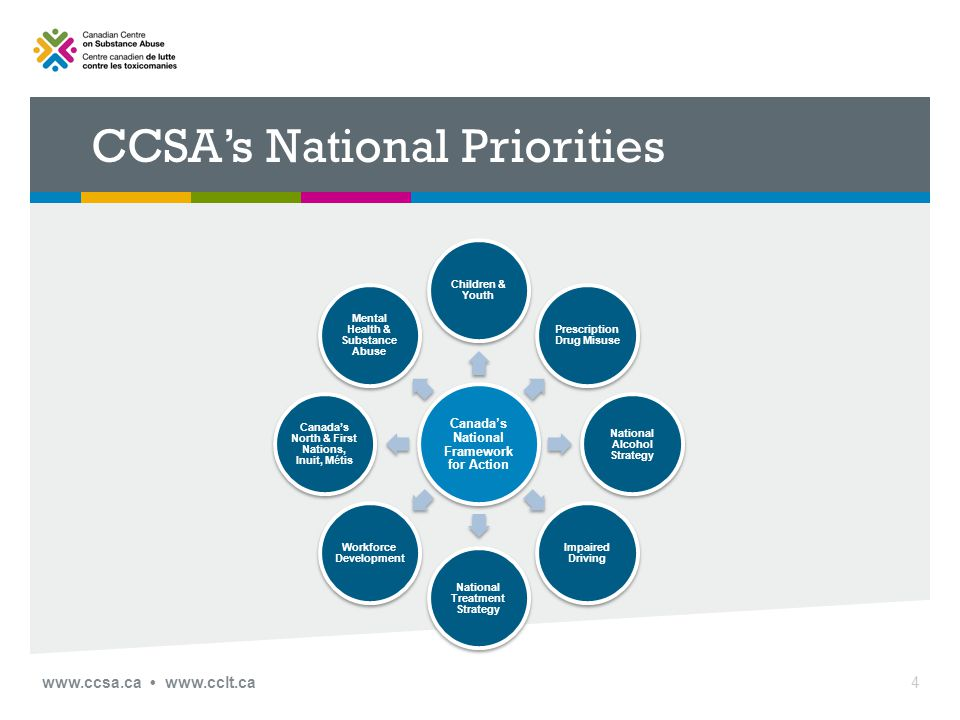 CCSA's National Priorities Canada's National Framework for Action Children & Youth Mental Health & Substance Abuse Canada's North & First Nations, Inuit, Métis Workforce Development National Treatment Strategy Impaired Driving National Alcohol Strategy Prescription Drug Misuse 4